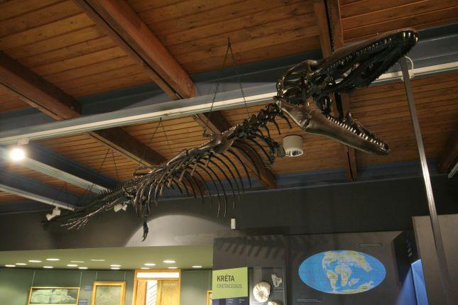 20121219-pannoniasaurus-rekonstrukcio.jpg
